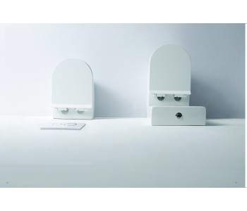 FLAY-R SERIES Back To Wall BB002CH